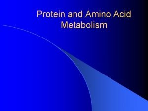 Protein and Amino Acid Metabolism Protein metabolism during
