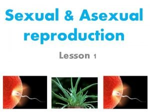 Sexual Asexual reproduction Lesson 1 Lesson 1 Sexual