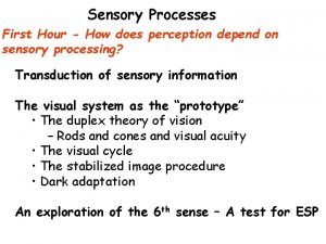 Sensory Processes First Hour How does perception depend