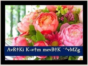 Av RKi Kvm mev BK v MZg wkK