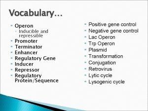 Vocabulary Operon Promoter Terminator Enhancer Regulatory Gene Inducer