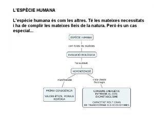 LESPCIE HUMANA Lespcie humana s com les altres