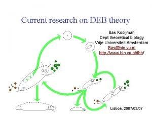Current research on DEB theory Bas Kooijman Dept