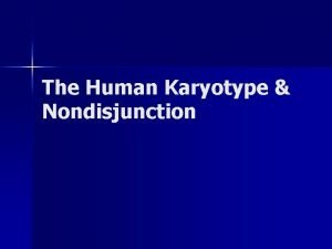 The Human Karyotype Nondisjunction Whats a Karyotype Scientists