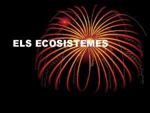 ELS ECOSISTEMES Estan formats per Medi fsic ssers