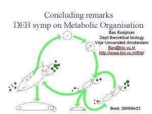 Concluding remarks DEB symp on Metabolic Organisation Bas