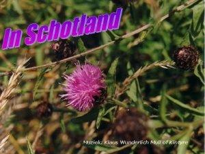 Muziek Klaus Wunderlich Mull of Kintyre Het geluk