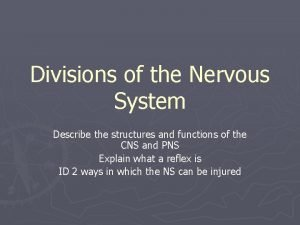 Divisions of the Nervous System Describe the structures
