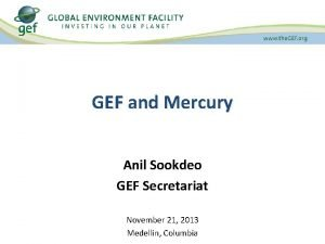 GEF and Mercury Anil Sookdeo GEF Secretariat November