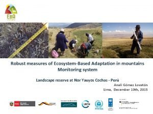 Robust measures of EcosystemBased Adaptation in mountains Monitoring