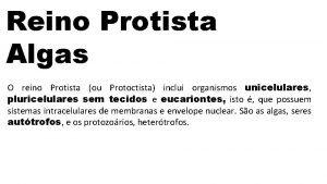 Reino Protista Algas O reino Protista ou Protoctista