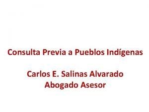 Consulta Previa a Pueblos Indgenas Carlos E Salinas