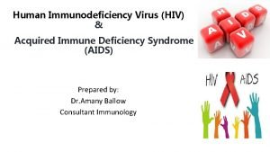Human Immunodeficiency Virus HIV Acquired Immune Deficiency Syndrome