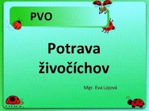PVO Potrava ivochov Mgr Eva Lojov zajac pavk