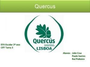 Quercus EFA Escolar 2 ano CP 7 Tema