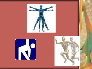 Kinesiology The study of the anatomy physiology and