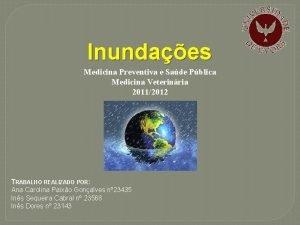 Inundaes Medicina Preventiva e Sade Pblica Medicina Veterinria