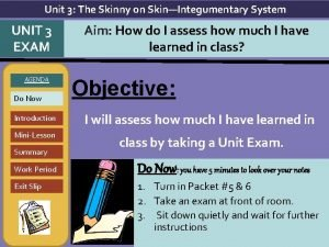 Unit 3 The Skinny on SkinIntegumentary System UNIT