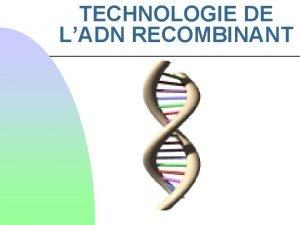 TECHNOLOGIE DE LADN RECOMBINANT La technologie de lADN