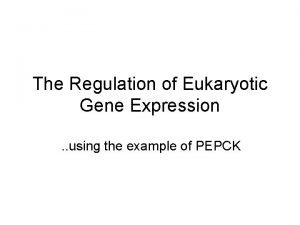 The Regulation of Eukaryotic Gene Expression using the