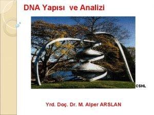 DNA Yaps ve Analizi CSHL Yrd Do Dr