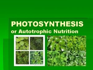 PHOTOSYNTHESIS or Autotrophic Nutrition PHOTOSYNTHESIS PHOTOSYNTHESIS What does
