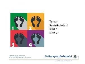 Tema Se risikofoten Niv 1 Niv 2 Kompetansehevingsprosjekt