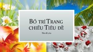 B TR TRANG CHIU TIU Tiu ph B