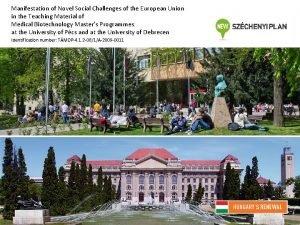 Manifestation of Novel Social Challenges of the European