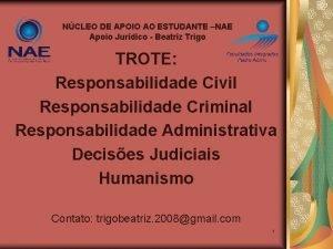 NCLEO DE APOIO AO ESTUDANTE NAE Apoio Jurdico