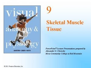 9 Skeletal Muscle Tissue Power Point Lecture Presentations