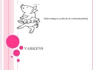 VARKENS Huisvesting en cyclus in de varkenshouderij VLOEROPPERVLAKTE