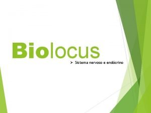 Biolocus Sistema nervoso e endcrino SISTEMA NERVOSO Biolocus
