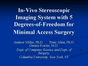 InVivo Stereoscopic Imaging System with 5 DegreesofFreedom for