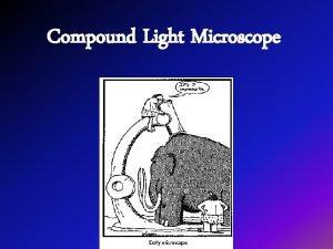 Compound Light Microscope A Light Microscope Parts Body