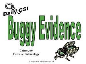 Crime 360 Forensic Entomology T Trimpe 2008 http