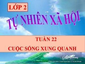 LP 2 TUN 22 CUC SNG XUNG QUANH