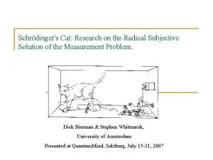 Schrdingers Cat Research on the Radical Subjective Solution