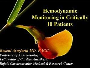 Hemodynamic Monitoring in Critically Ill Patients Rasoul Azarfarin