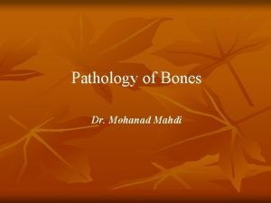 Pathology of Bones Dr Mohanad Mahdi Normal anatomy