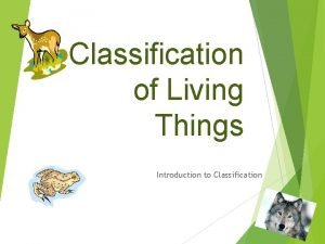 Classification of Living Things Introduction to Classification How