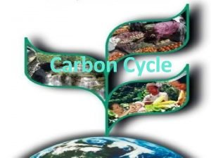 Carbon Cycle What is Carbon and carbon dioxide