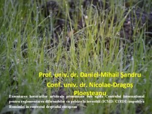 Prof univ dr DanielMihail andru Conf univ dr