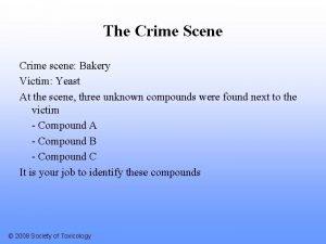 The Crime Scene Crime scene Bakery Victim Yeast