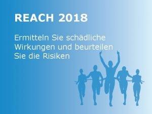 REACH 2018 Ermitteln Sie schdliche Wirkungen und beurteilen