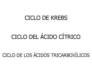 CICLO DE KREBS CICLO DEL CIDO CTRICO CICLO