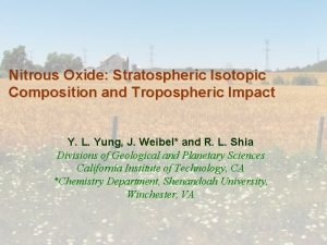 Nitrous Oxide Stratospheric Isotopic Composition and Tropospheric Impact