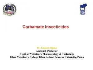 Carbamate Insecticides Dr Kumari Anjana Assistant Professor Deptt