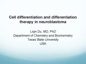 Cell differentiation and differentiation therapy in neuroblastoma Liqin