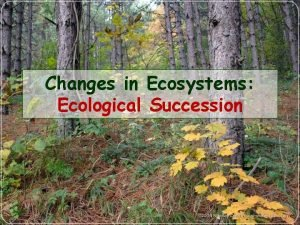 Changes in Ecosystems Ecological Succession What is Ecological